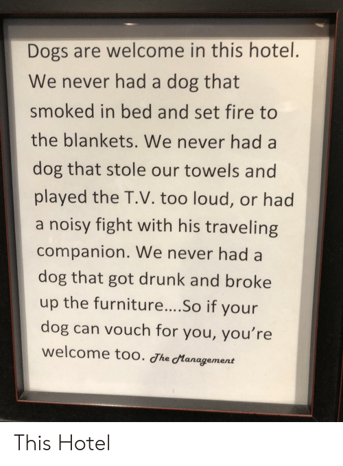 Hotel: Dogs are welcome in this hotel.  We never had a dog that  smoked in bed and set fire to  the blankets. We never had a  dog that stole our towels and  played the T.V. too loud, or had  a noisy fight with his traveling  companion. We never had a  dog that got drunk and broke  up the furniture....So if your  dog can vouch for you, you're  welcome too. Jhe Management This Hotel
