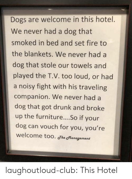 Hotel: Dogs are welcome in this hotel.  We never had a dog that  smoked in bed and set fire to  the blankets. We never had a  dog that stole our towels and  played the T.V. too loud, or had  a noisy fight with his traveling  companion. We never had a  dog that got drunk and broke  up the furniture...So if your  dog can vouch for you, you're  welcome too. Jhe Management laughoutloud-club:  This Hotel