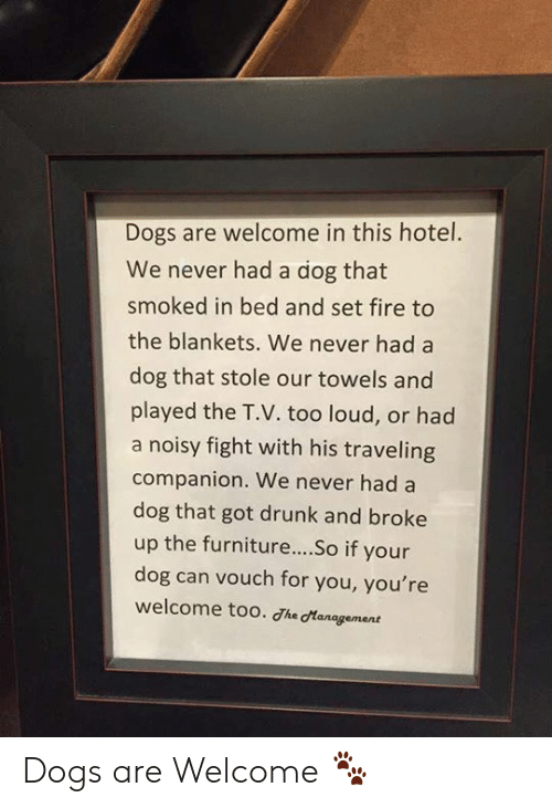 Hotel: Dogs are welcome in this hotel.  We never had a dog that  smoked in bed and set fire to  the blankets. We never had a  dog that stole our towels and  played the T.V. too loud, or had  a noisy fight with his traveling  companion. We never had a  dog that got drunk and broke  up the furniture....So if your  dog can vouch for you, you're  welcome too. Jhe cManagement Dogs are Welcome 🐾
