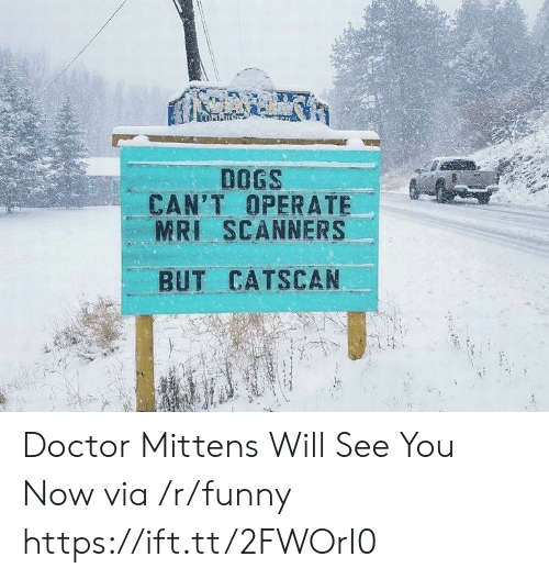 scanners: DOGS  CAN'T OPERATE  MRI SCANNERS  BUT CATSCAN Doctor Mittens Will See You Now via /r/funny https://ift.tt/2FWOrI0