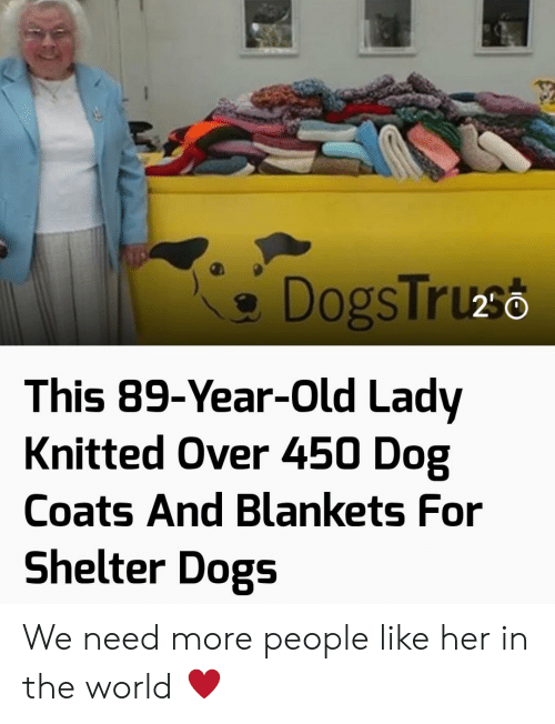 Dogs, World, and Old: DogsTruso  This 89-Year-Old Lady  Knitted Over 450 Dog  Coats And Blankets For  Shelter Dogs We need more people like her in the world ♥