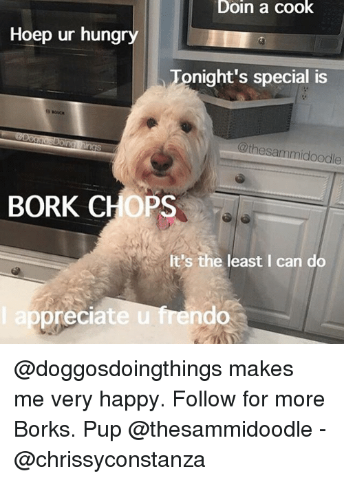 Borking: Doin a cook  Hoep ur hungry  Tonight's special is  @thesammidoodle  BORK CHOPS  It's the least I can do  ep  preciate u frendo @doggosdoingthings makes me very happy. Follow for more Borks. Pup @thesammidoodle - @chrissyconstanza