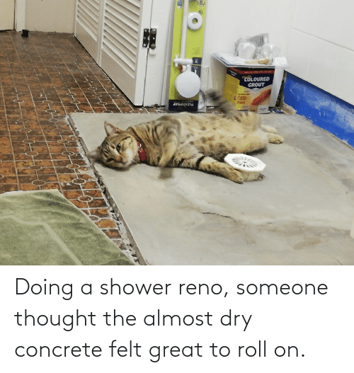 concrete: Doing a shower reno, someone thought the almost dry concrete felt great to roll on.