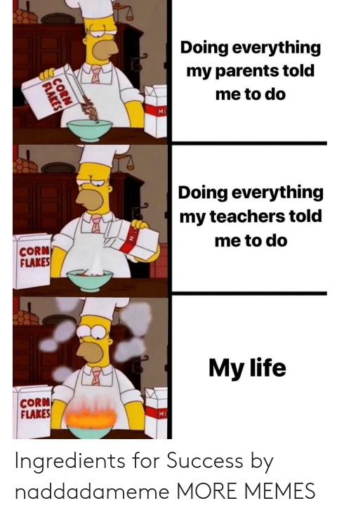 Dank, Life, and Memes: Doing everything  my parents told  me to do  Ml  Doing everything  my teachers told  me to do  CORN  FLAKES  My life  CORN  FLAKES  MI Ingredients for Success by naddadameme MORE MEMES