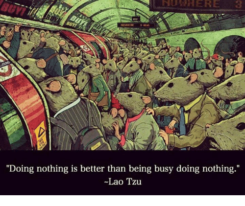 "laos: ""Doing nothing is better than being busy doing nothing  Lao Tzu"