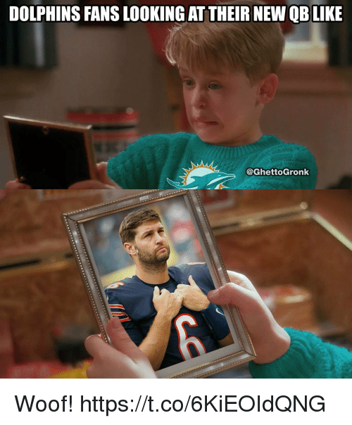 Woofe: DOLPHINS FANS LOOKING AT THEIR NEW QBLIKE  @GhettoGronk Woof! https://t.co/6KiEOIdQNG