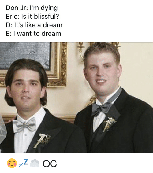 blissful: Don Jr: I'm dying  Eric: Is it blissful?  D: It's like a dream  E: I want to dream ☺️💤☁️ OC