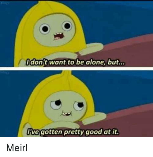 Being Alone, Good, and MeIRL: don t want to be alone, but...  e gotten pretty good at i. Meirl