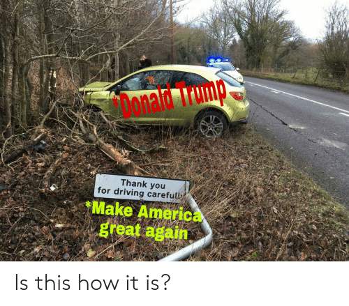 America, Driving, and Reddit: Donad rump  Thank you  for driving carefull  Make America  great again Is this how it is?