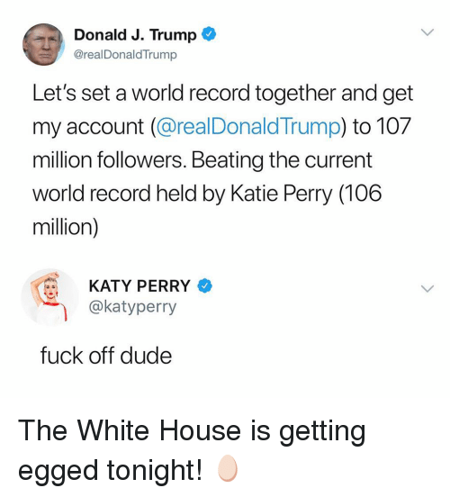 Dude, Ironic, and Katy Perry: Donald J. Trump  @realDonaldTrump  Let's set a world record together and get  my account (@realDonald Trump) to 107  million followers. Beating the current  world record held by Katie Perry (106  million)  KATY PERRY  @katyperry  fuck off dude The White House is getting egged tonight! 🥚
