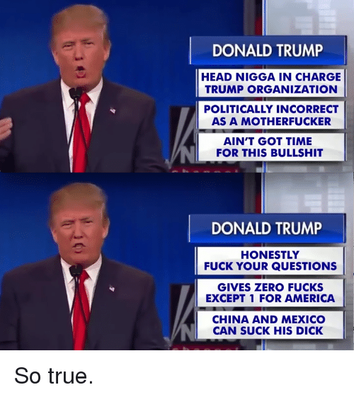 America, Dicks, and Donald Trump: DONALD TRUMP  HEAD NIGGA IN CHARGE  TRUMP ORGANIZATION  POLITICALLY INCORRECT  AS A MOTHERFUCKER  AIN'T GOT TIME  FOR THIS BULLSHIT  DONALD TRUMP  HONESTLY  FUCK YOUR QUESTIONS  GIVES ZERO FUCKS  EXCEPT 1 FOR AMERICA  CHINA AND MEXICO  CAN SUCK HIS DICK So true.