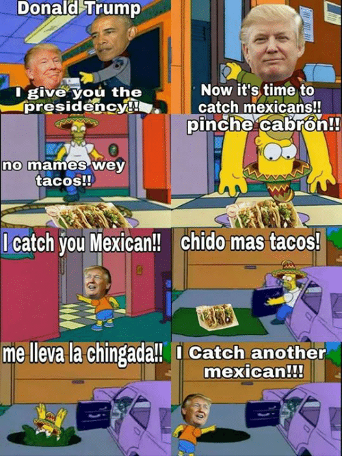 Chingada: Donald Trump  Now it's time to  I give You the  presidency!  l catch mexicans!!  pinche cabron!  no mames Wey  tacos!!  catch you Mexican!! chido mas tacos!  me lleva la Chingada!! Catch another  mexican!!!