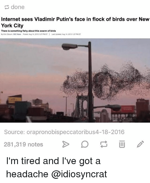 Internet, Memes, and New York: done  Internet sees Vladimir Putin's face in flock of birds over New  York City  There is something fishy about this swarm of birds  Laatuodand: Aug 20ts 12 PM ET  Source: orapronobispeccatoribus4-18-2016  281,319 notes  O I'm tired and I've got a headache @idiosyncrat