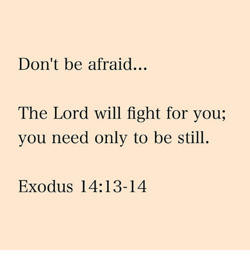 Exodus: Don't be afraid...  The Lord will fight for you,  you need only to be still.  Exodus 14:13-14