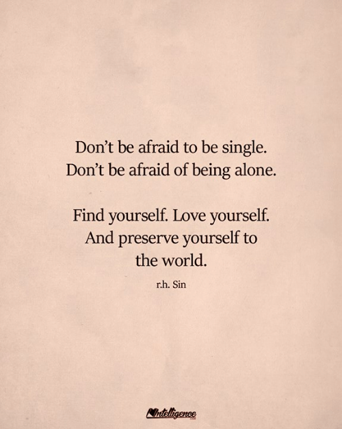 Being Alone, Love, and Memes: Don't be afraid to be single.  Don't be afraid of being alone.  Find yourself. Love yourself.  And preserve yourself to  the world.  rh. Sin