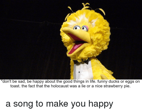Funny Ducks: don't be sad, be happy about the good things in life. funny ducks or eggs on  toast. the fact that the holocaust was a lie or a nice strawberry pie. a song to make you happy