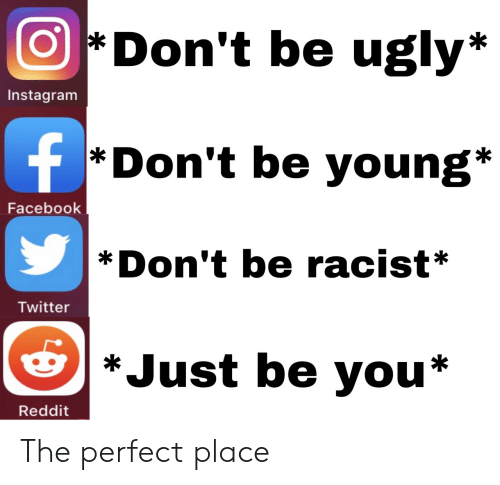 Facebook, Instagram, and Reddit: Don't be ugly*  Instagram  f  *Don't be young*  Facebook  Don't be racist*  Twitter  *Just be you*  Reddit The perfect place