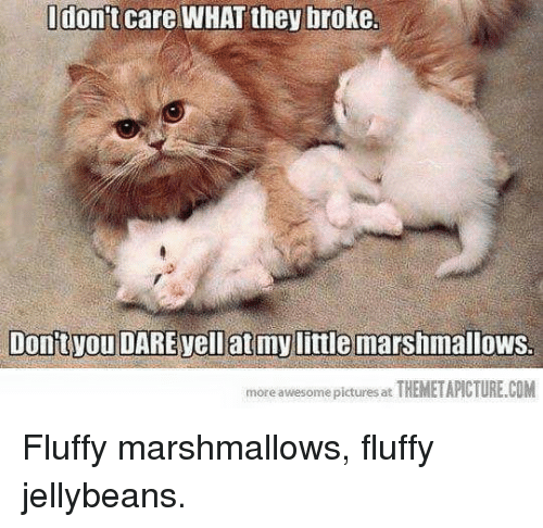 Themetapictures: don't care WHAT they broke  Dontvou DARE vell at mylittle marshmallows.  more awesome pictures at  THEMETAPICTURE.COM Fluffy marshmallows, fluffy jellybeans.