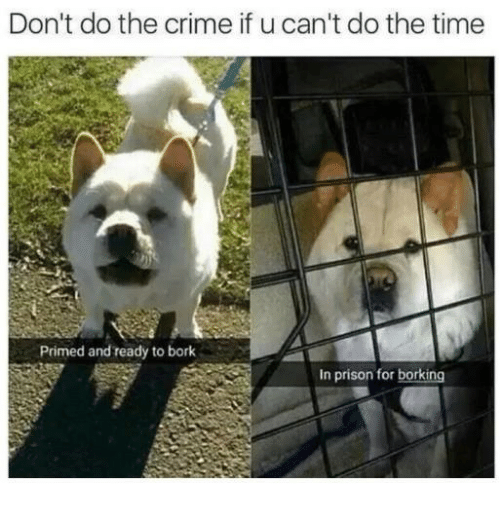 Borking: Don't do the crime if u can't do the time  Primed and ready to bork  In prison for borking