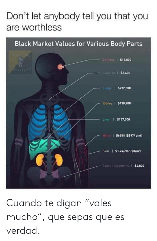 "Bones, Black, and Pint: Don't let anybody tell you that you  are worthless  Black Market Values for Various Body Parts  Corneas 1 $19,800  5kifettr) i $6,600  Lungs 1 $272,000  Kidney $138,700  Liver I $137,000  $630/1 I$297/ pint  Skin $1.24/cm2 1$8/in  $4,800  Bones Ligaments1 Cuando te digan ""vales mucho"", que sepas que es verdad."