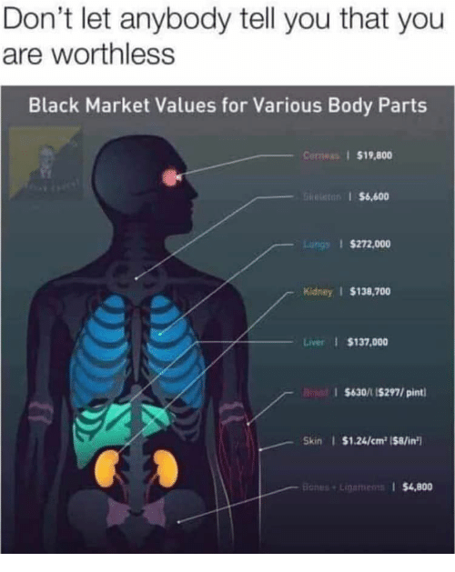Black, Pint, and Black Market: Don't let anybody tell you that you  are worthless  Black Market Values for Various Body Parts  Conwas $19,800  GRe $6,600  Luhgs $272,000  Kidney $138,700  Liver $137,000  $630/1 15297/pint  Skin $1.24/cm2 ($8/in  Banes+Linemens $4,800