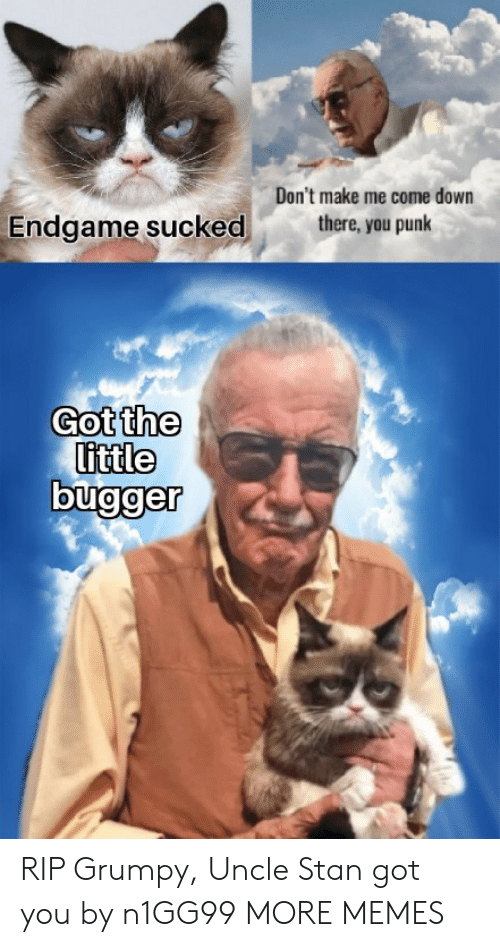 Me Come: Don't make me come down  there, you punk  Endgame sucked  Got the  little RIP Grumpy, Uncle Stan got you by n1GG99 MORE MEMES