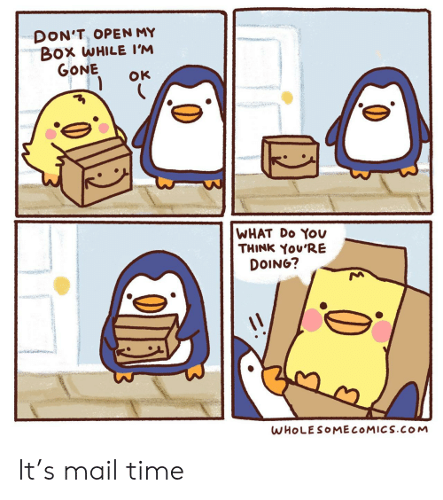 Youre Doing: DON'T, OPEN MY  Box WHILE I'M  GONE  OK  WHAT Do YOv  THINK You'RE  DOING?  WHOLESOMECOMICS.cOoM It's mail time