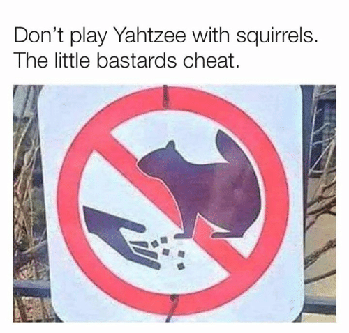 squirrels: Don't play Yahtzee with squirrels.  The little bastards cheat.