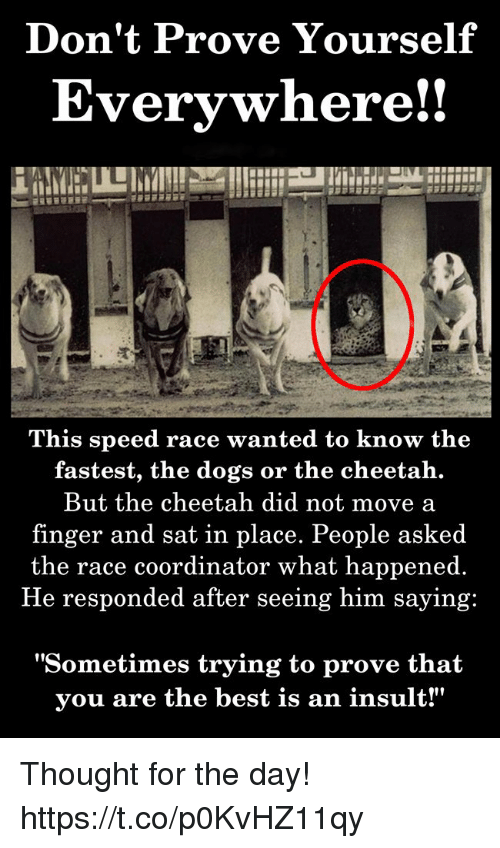 """Dogs, Best, and Cheetah: Don't Prove Yourself  Everywhere!!  This speed race wanted to know the  fastest, the dogs or the cheetah.  But the cheetah did not move a  finger and sat in place. People asked  the race coordinator what happened.  He responded after seeing him saying:  """"Sometimes trying to prove that  vou are the best is an insult!"""" Thought for the day! https://t.co/p0KvHZ11qy"""