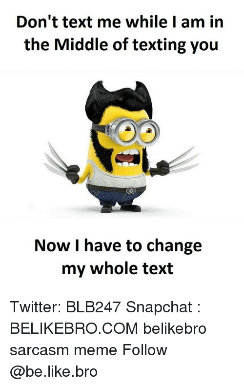 Dont Text Me: Don't text me while I am in  the Middle of texting you  Now I have to change  my whole text Twitter: BLB247 Snapchat : BELIKEBRO.COM belikebro sarcasm meme Follow @be.like.bro