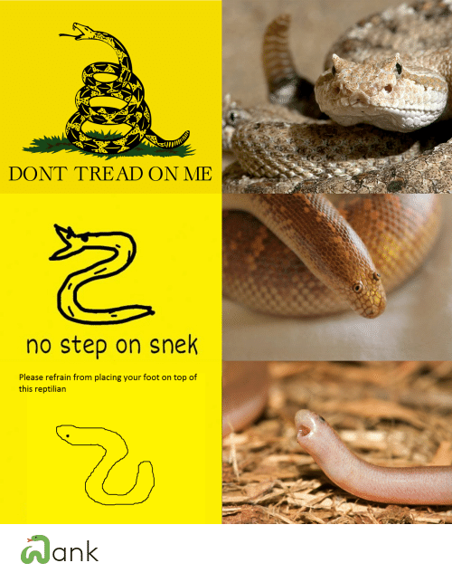 Dont Tread: DONT TREAD ON ME  no step on snek  Please refrain from placing your foot on top of  this reptilian 🐍ank