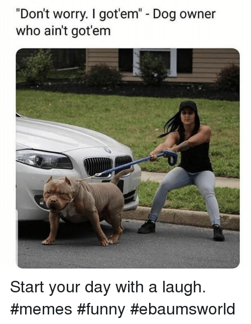 "Dog Owner: ""Don't worry. I got'em"" - Dog owner  who ain't got'em Start your day with a laugh. #memes #funny #ebaumsworld"