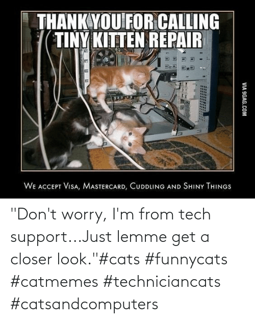 "dont: ""Don't worry, I'm from tech support...Just lemme get a closer look.""#cats #funnycats #catmemes #techniciancats #catsandcomputers"