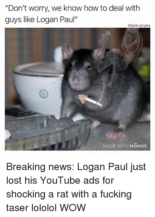 """lololol: """"Don't worry, we know how to deal with  guys like Logan Paul'  @tank.sinatra  MADE WITH MOMUS Breaking news: Logan Paul just lost his YouTube ads for shocking a rat with a fucking taser lololol WOW"""
