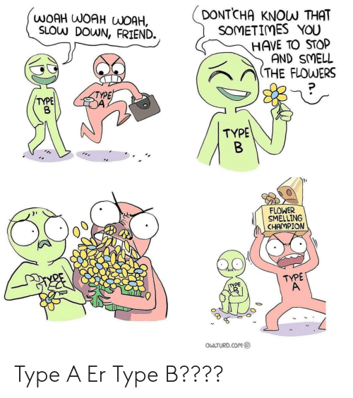 Smell, Flower, and Flowers: DONTCHA  WOAH WOAH WOAH,  SLOW DOWN, FRIEND.  KNOW THAT  SOMETIMES YOU  HAVE TO STOP  AND SMELL  (THE FLOWERS  TYPE  TYPE  TYPE  B  FLOWER  SMELLING  CHAMPION  TYPE  A  TYPE  OWLTURD.COM Type A Er Type B????