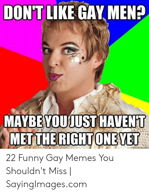 Funny Gay Memes: DONTIKE GAY MEN?  MAYBE YOUJUST HAVENT  MET THE RIGHT ONEVET  06 0  quickmeme. com 22 Funny Gay Memes You Shouldn't Miss | SayingImages.com