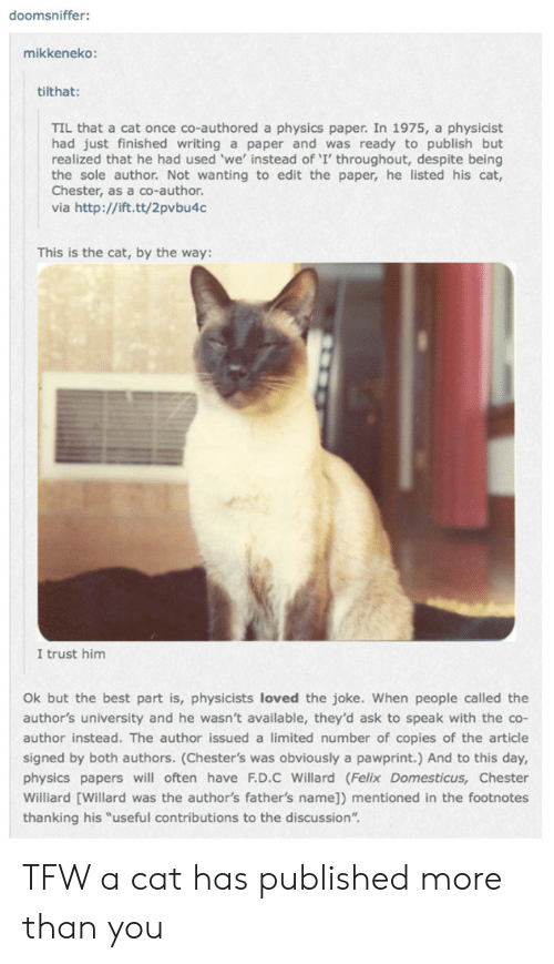 """felix: doomsniffer:  mikkeneko:  tilthat:  TIL that a cat once co-authored a physics paper. In 1975, a physicist  had just finished writing a paper and was ready to publish but  realized that he had used 'we' instead of 'I' throughout, despite being  the sole author. Not wanting to edit the paper, he listed his cat,  Chester, as a co-author.  via http://ift.tt/2pvbu4c  This is the cat, by the way:  I trust him  Ok but the best part is, physicists loved the joke. When people called the  author's university and he wasn't available, they'd ask to speak with the co-  author instead. The author issued a limited number of copies of the article  signed by both authors. (Chester's was obviously a pawprint.) And to this day,  physics papers will often have F.D.C Willard (Felix Domesticus, Chester  Williard [Willard was the author's father's name]) mentioned in the footnotes  thanking his """"useful contributions to the discussion"""". TFW a cat has published more than you"""