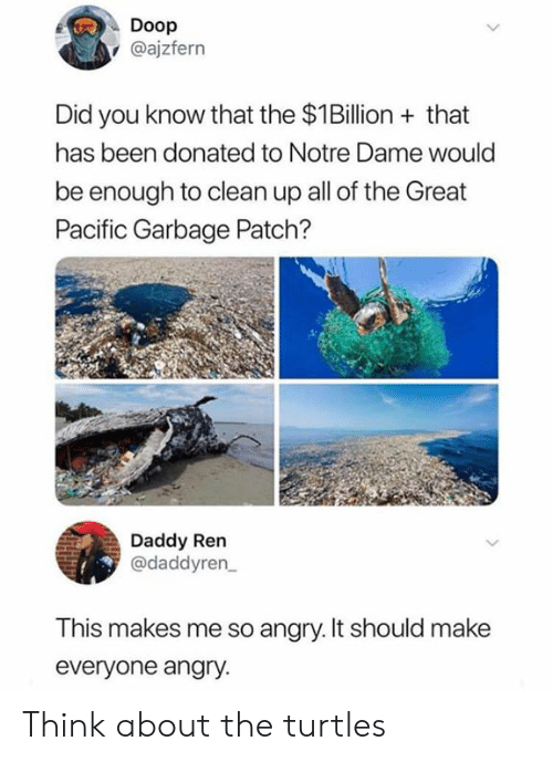 Memes, Notre Dame, and Angry: Doop  @ajzfern  Did you know that the $1Billion that  has been donated to Notre Dame would  be enough to clean up all of the Great  Pacific Garbage Patch?  Daddy Ren  @daddyren  This makes me so angry. It should make  everyone angry. Think about the turtles