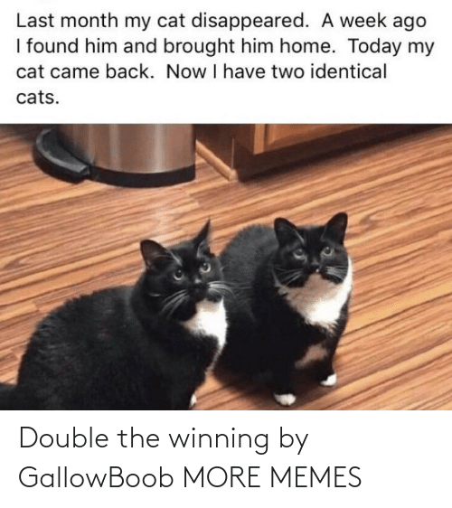 double: Double the winning by GallowBoob MORE MEMES