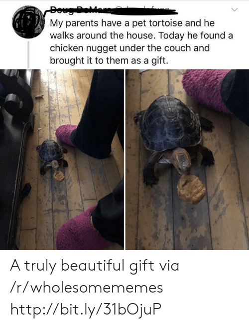Beautiful, Doug, and Parents: Doug Dear  My parents have a pet tortoise and he  walks around the house. Today he found a  chicken nugget under the couch and  brought it to them as a gift. A truly beautiful gift via /r/wholesomememes http://bit.ly/31bOjuP