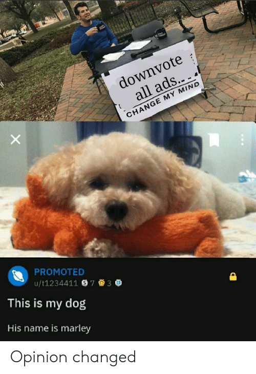 Promoted: downvote  all ads...  CHANGE MY MIND  PROMOTED  This is my dog  His name is marley  u/t1234411 S73 * Opinion changed