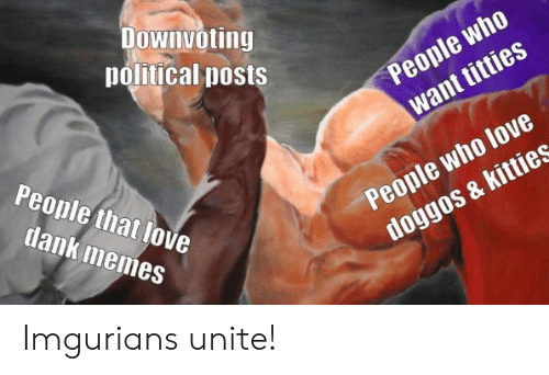 political: Downvoting  political posts  People who  want titties  People that love  People who love  doggos & kitties  dank memes Imgurians unite!