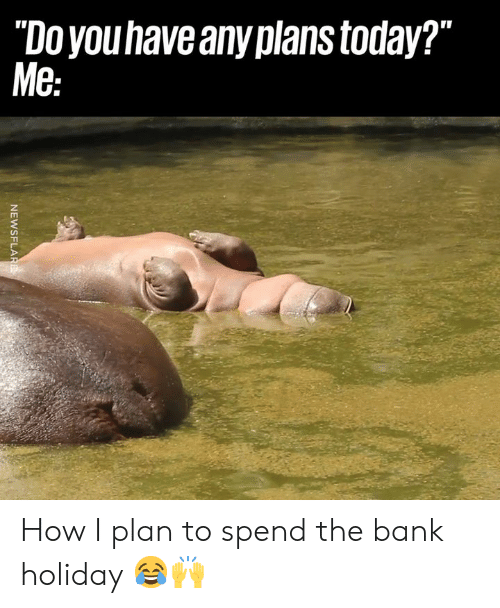 """Any Plans: """"Doyouhave any plans today?""""  Me How I plan to spend the bank holiday 😂🙌"""