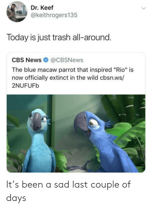 "News, Trash, and Cbs: Dr. Keef  @keithrogers135  Today is just trash all-around.  CBS News @CBSNews  The blue macaw parrot that inspired ""Rio"" is  now officially extinct in the wild cbsn.ws/  2NUFUFb It's been a sad last couple of days"