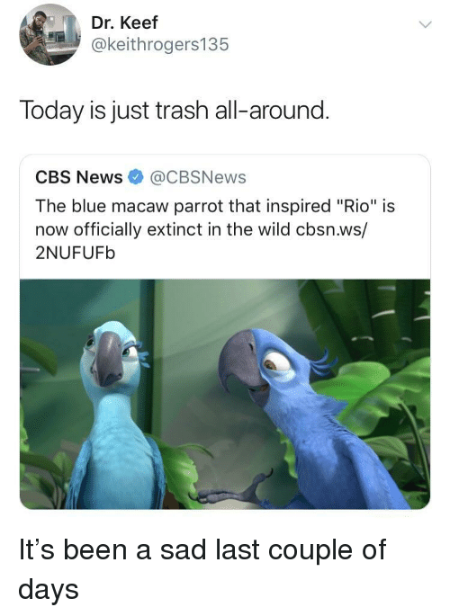 "News, Trash, and Cbs: Dr. Keef  @keithrogers135  Today is just trash all-around.  CBS News@CBSNews  The blue macaw parrot that inspired ""Rio"" is  now officially extinct in the wild cbsn.ws/  2NUFUFb It's been a sad last couple of days"