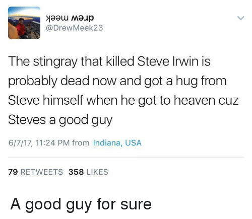 Heaven, Steve Irwin, and Good: @DrewMeek23  The stingray that killed Steve Irwin is  probably dead now and got a hug from  Steve himself when he got to heaven cuz  Steves a good guy  6/7/17, 11:24 PM from Indiana, USA  79 RETWEETS 358 LIKES A good guy for sure