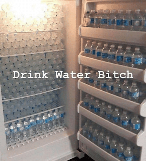 Bitch, Water, and Drink Water: Drink Water Bitch