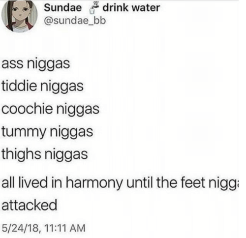 thighs: drink water  @sundae_bb  ass niggas  tiddie niggas  coochie niggas  tummy niggas  thighs niggas  all lived in harmony until the feet nigg  attacked  5/24/18, 11:11 AM