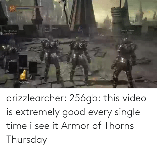I See: drizzlearcher:  256gb: this video is extremely good every single time i see it   Armor of Thorns Thursday