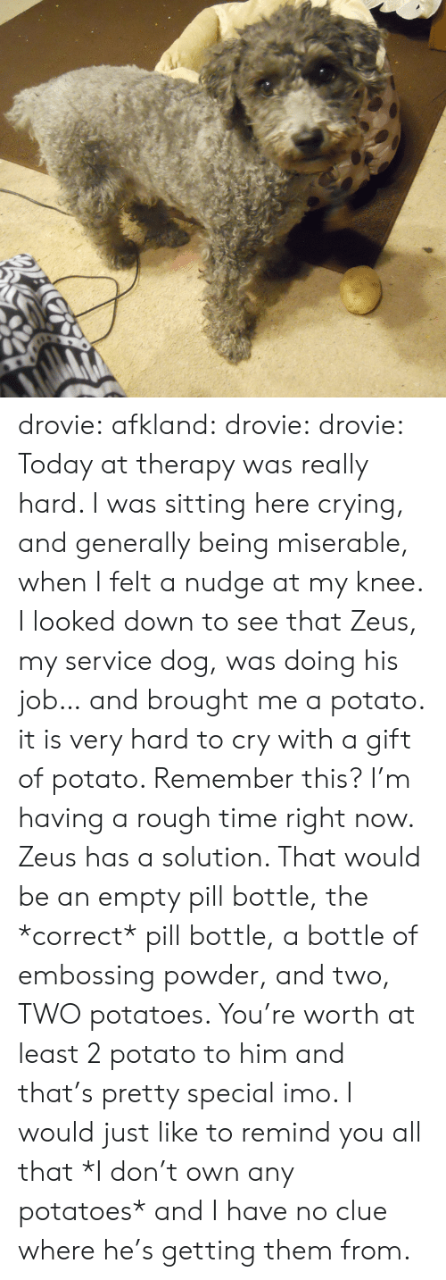 Crying, Tumblr, and Blog: drovie:  afkland:  drovie:  drovie:  Today at therapy was really hard. I was sitting here crying, and generally being miserable, when I felt a nudge at my knee. I looked down to see that Zeus, my service dog, was doing his job… and brought me a potato. it is very hard to cry with a gift of potato.   Remember this? I'm having a rough time right now. Zeus has a solution.  That would be an empty pill bottle, the *correct* pill bottle, a bottle of embossing powder, and two, TWO potatoes.   You're worth at least 2 potato to him and that's pretty special imo.   I would just like to remind you all that *I don't own any potatoes* and I have no clue where he's getting them from.